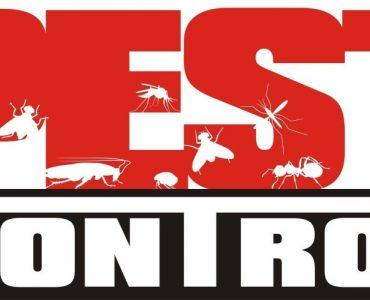 For Pest Control Services
